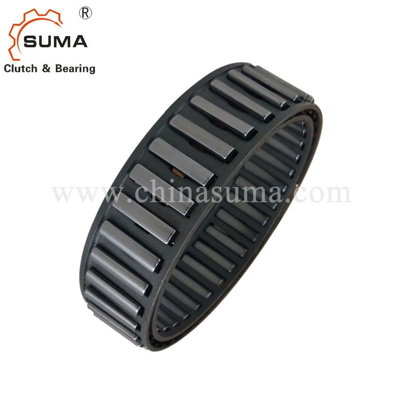 Bwx136709 Cage Freewheels Cam One Way Clutch with Sprag Type pictures & photos