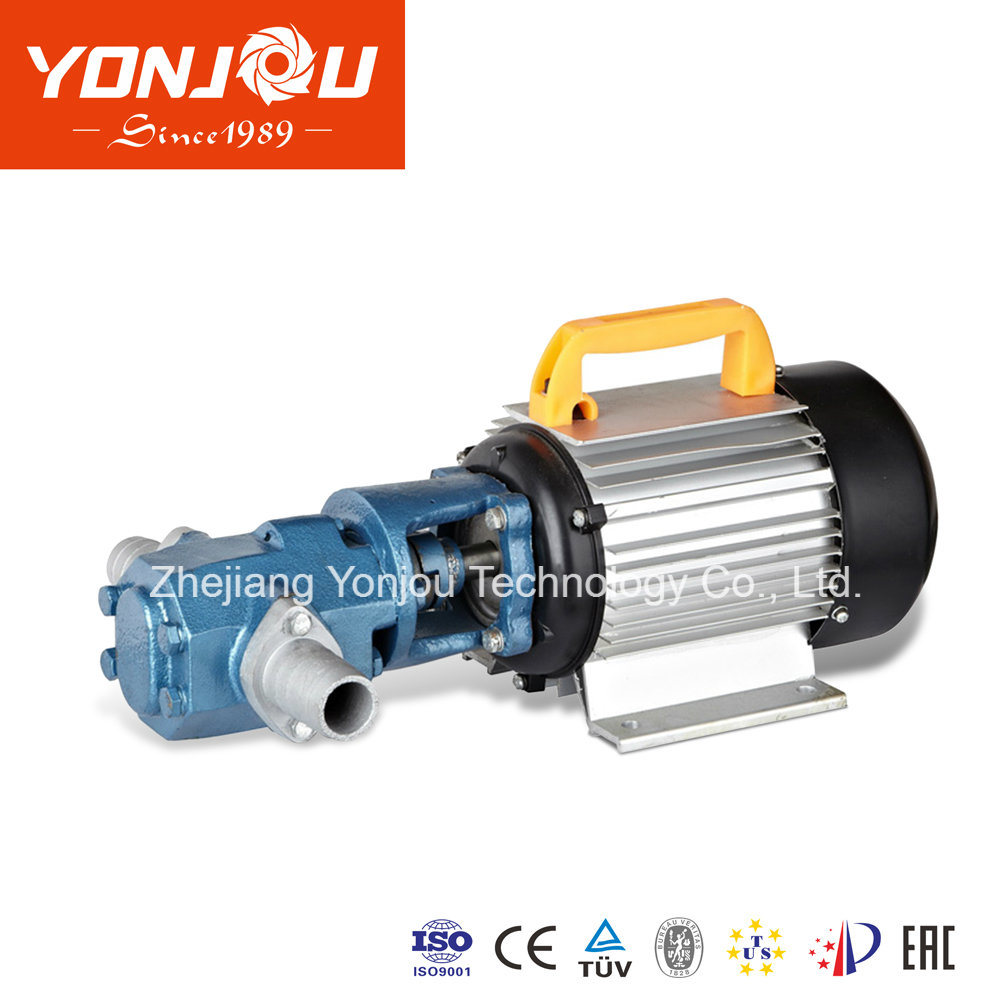 Waste Oil Electric Change Pump