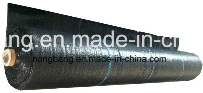100% PP Mulch Film Landscape Fabric for Agriculture
