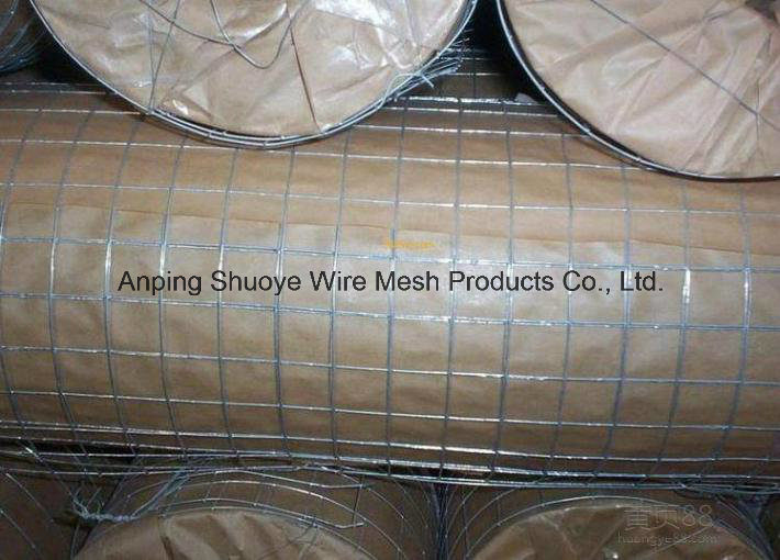 Welded Wire Mesh Made of Galvanized, PVC or Stainless Steel Wire pictures & photos