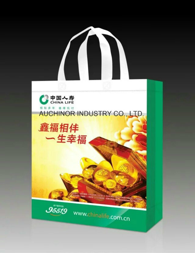 Laminated Printed Reusable Nonwoven Bag pictures & photos
