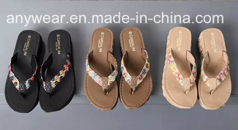 cf606737fdf China New Design Ladies Slipper Womens Flip Flops Shoes (549) - China  Slipper