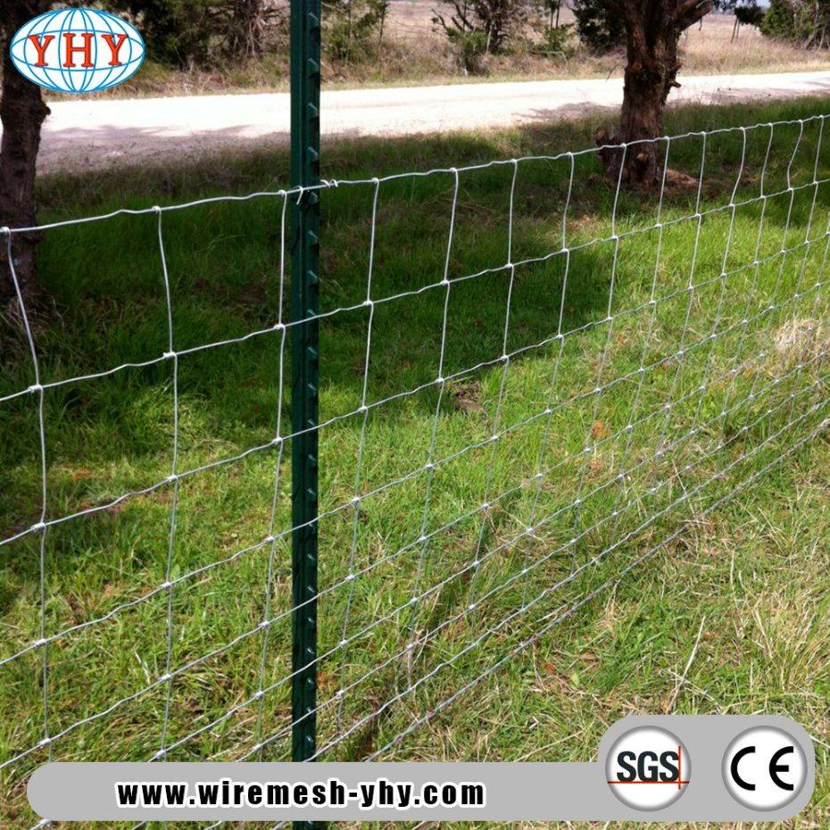 China 5′ Height Heavy Galvanized Steel Livestock Wire Netting Fence ...