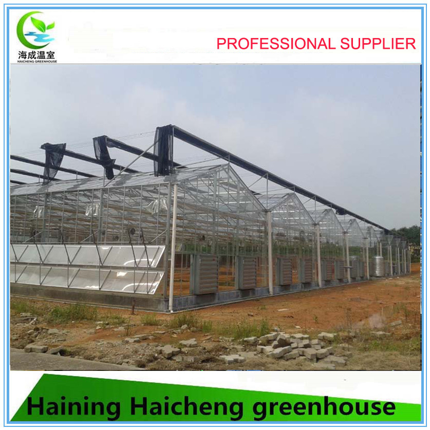 2017 China Supplier Garden Greenhouse