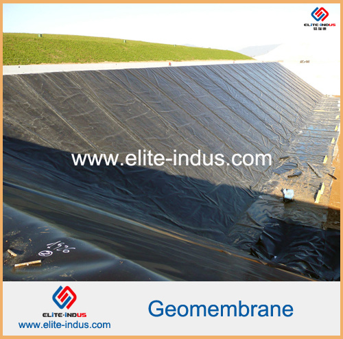 PE EVA Ecb PVC HDPE Geomembrane for Tunnel pictures & photos