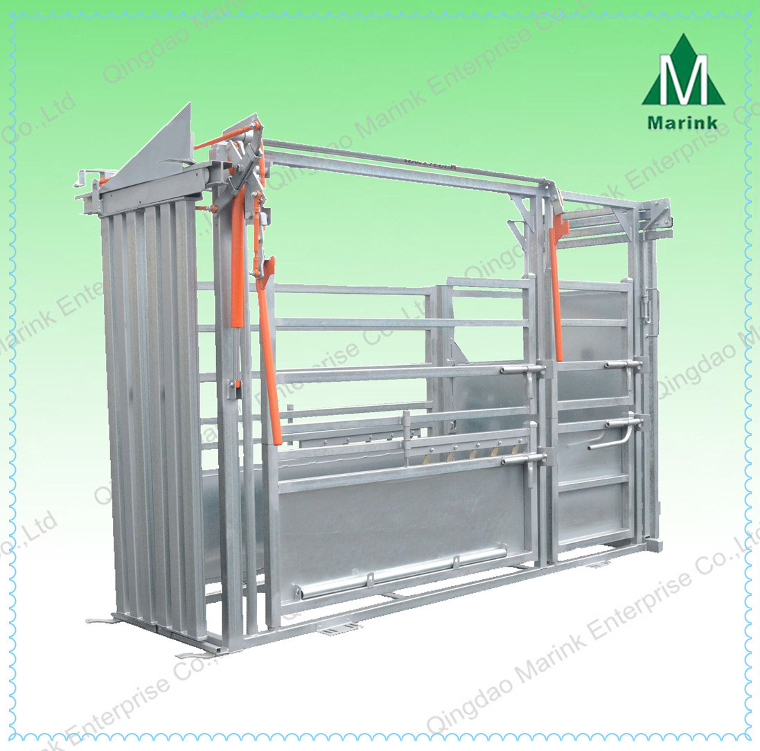 High Quality Powder Coated Cattle Squeeze Crush
