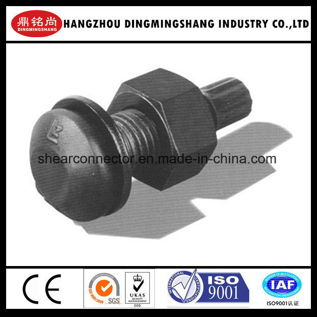 High Strength Bolt ASTM A325 Tc Bolt