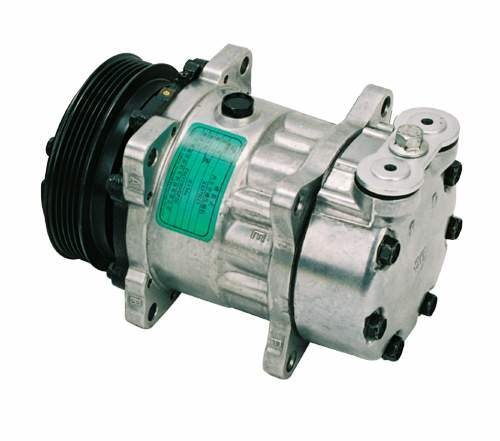 China Auto Air-conditioner Compressor  Dl20-006