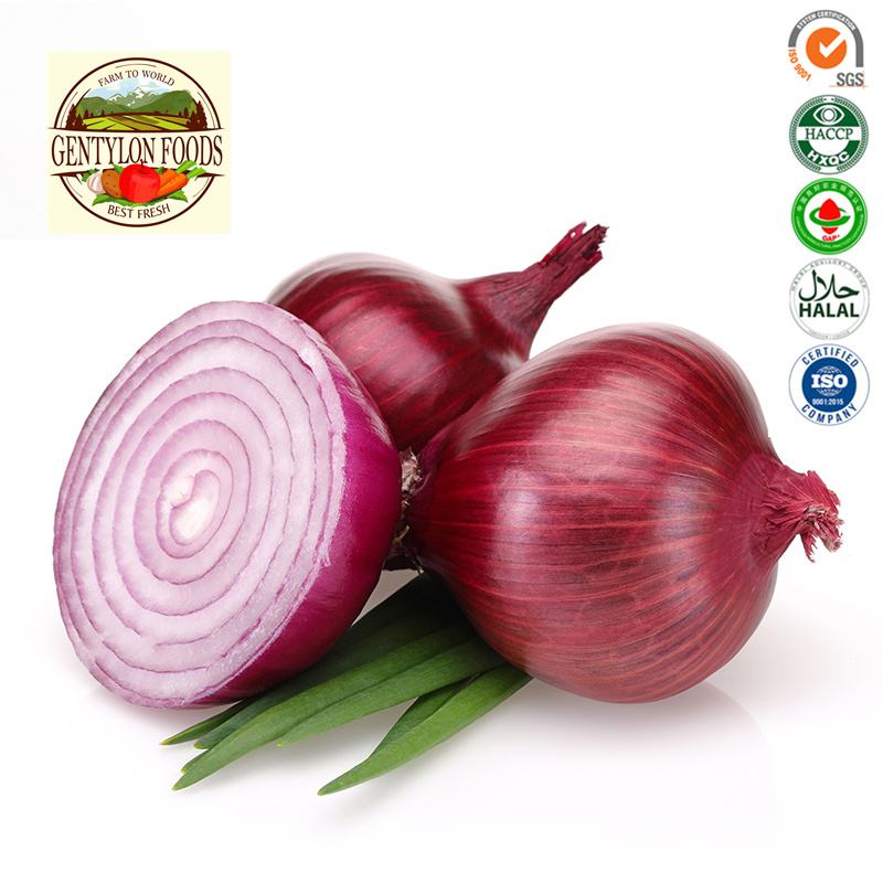 Fresh Onion 2019 New Crop Lowest Price pictures & photos