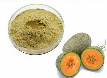 [Hot Item] Natural Melon Extract Powder Fruit Extracts