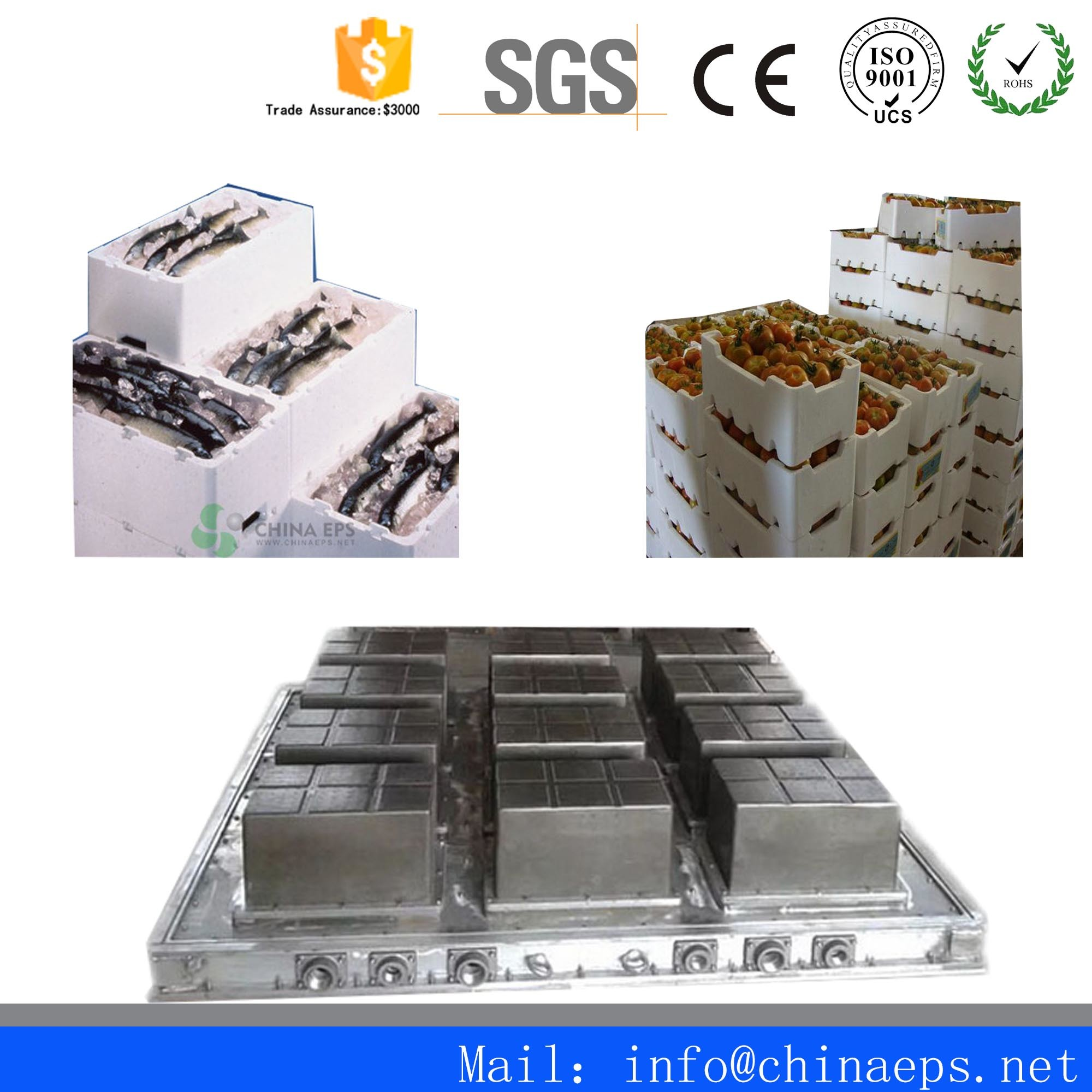 [Hot Item] Used EPS Styrofoam and Polyfoam Fish Box Mould