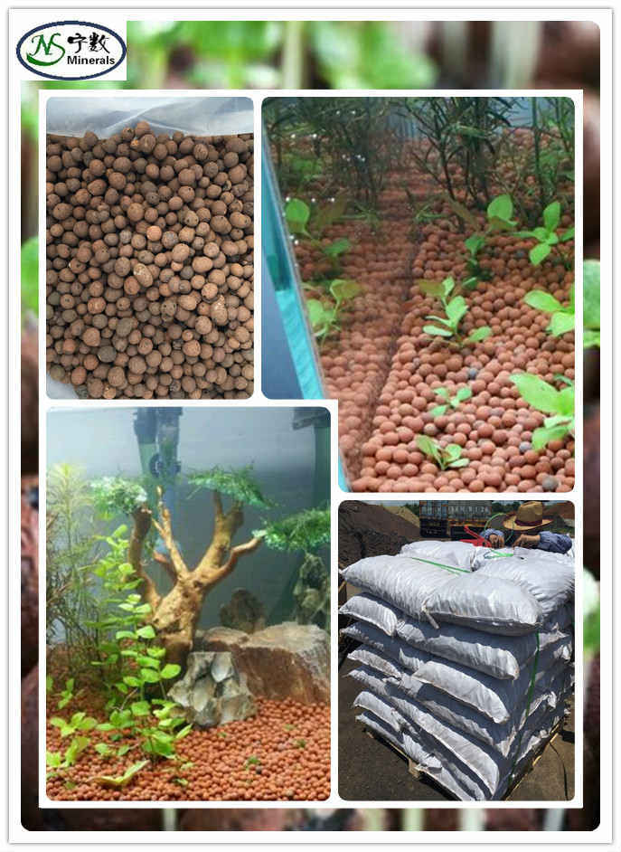 [Hot Item] Expanded Clay for Hydroponic Aquaponic System, Fish Tank Fish  Pond