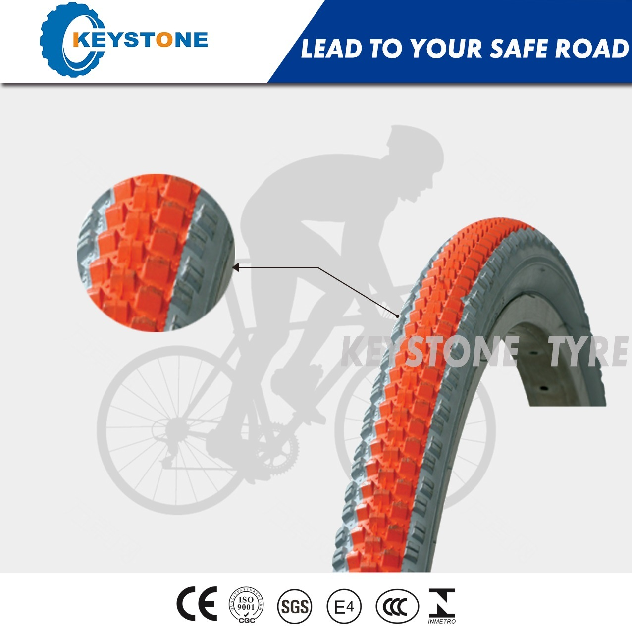 Excellent Quality with Euro Standard Bicycle Tyre Factory Supply Directly (8