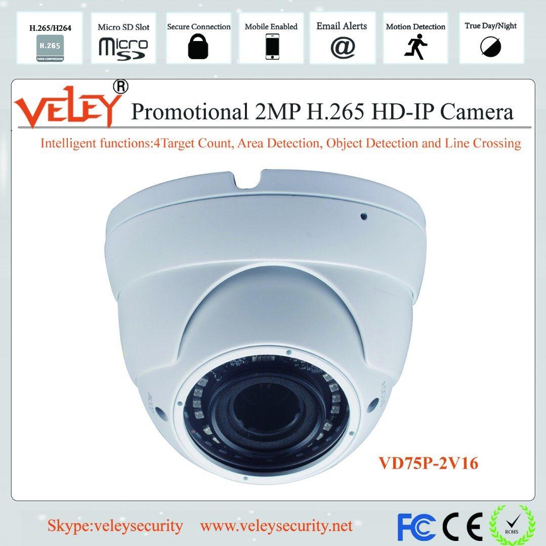 [Hot Item] CCTV Dome Camera Network Hikvision IP Camera HD Security Camera