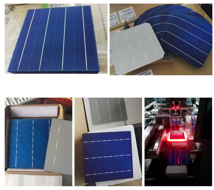 156*156mm 3bb Multi Polycrystalline Silicon Material Solar Cells