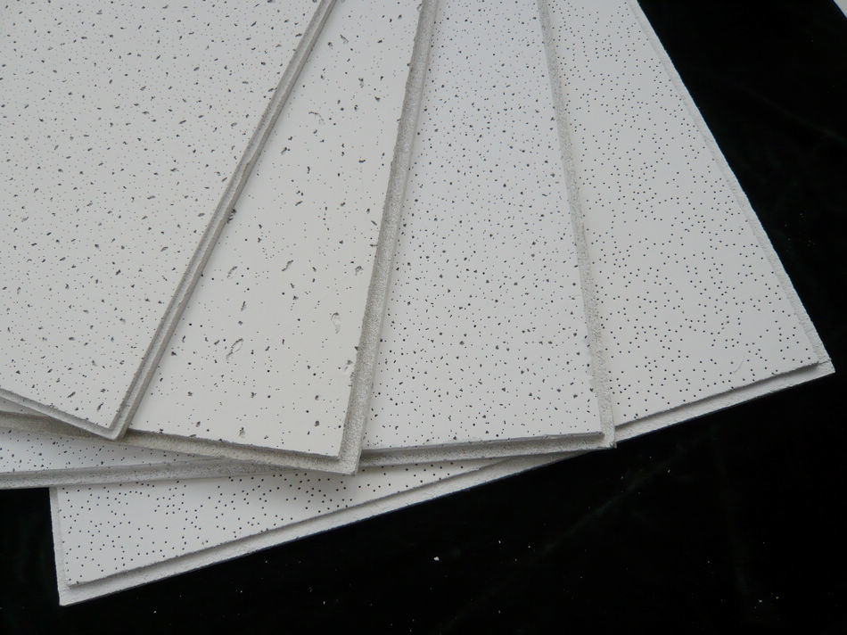 x product ceiling exterior board ft in do c ceilings type at ceilingboard usg lg capitol