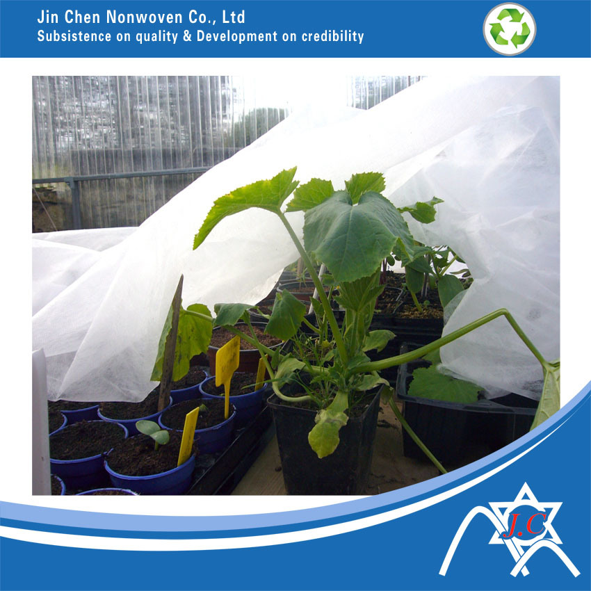 PP Nonwoven Fabric for Agriculture Fruit Cover pictures & photos