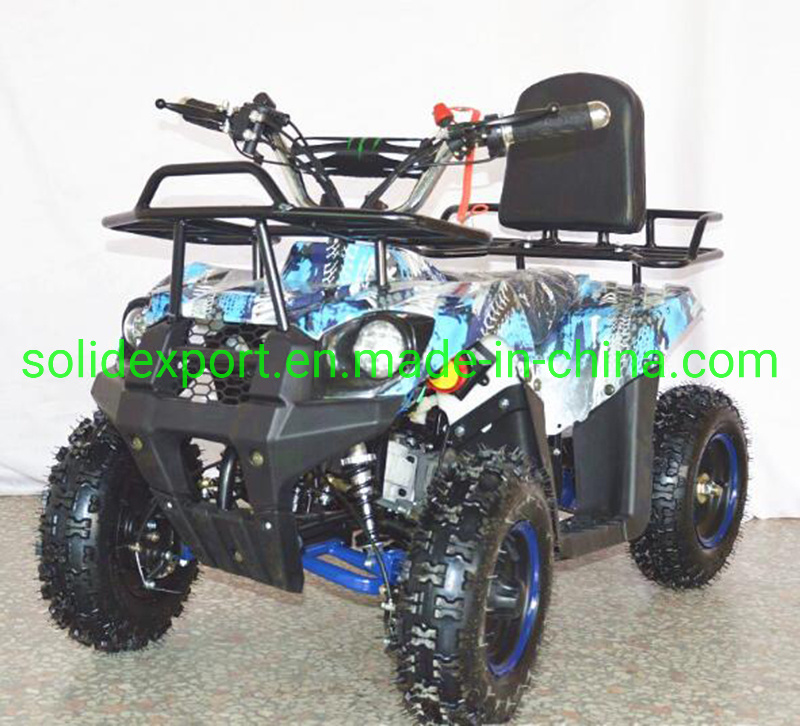 China 49cc Pull Start+Electric Start Gasoline Mini ATV&Quad