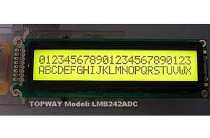 24X2 Character LCD Display Alphanumeric COB Type Character LCD Module (LMB242A)