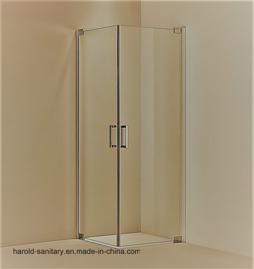 China Pivot Hinge Open Double Swing Shower Door China Shower