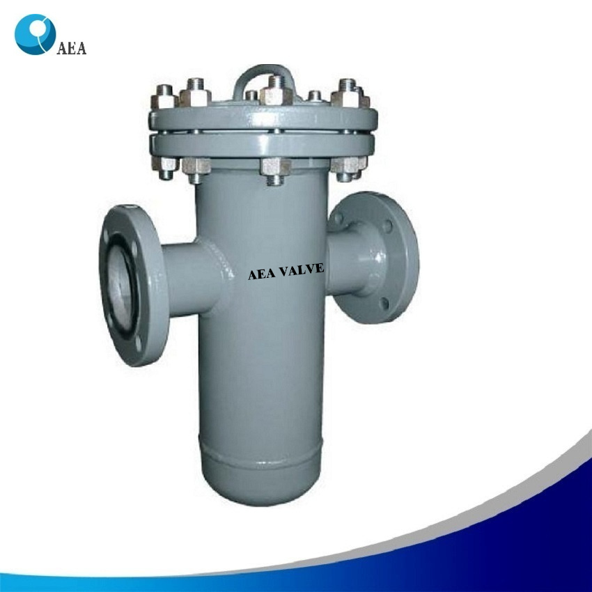 PTFE Y Strainer 2 Press 304 SS 20 Mesh