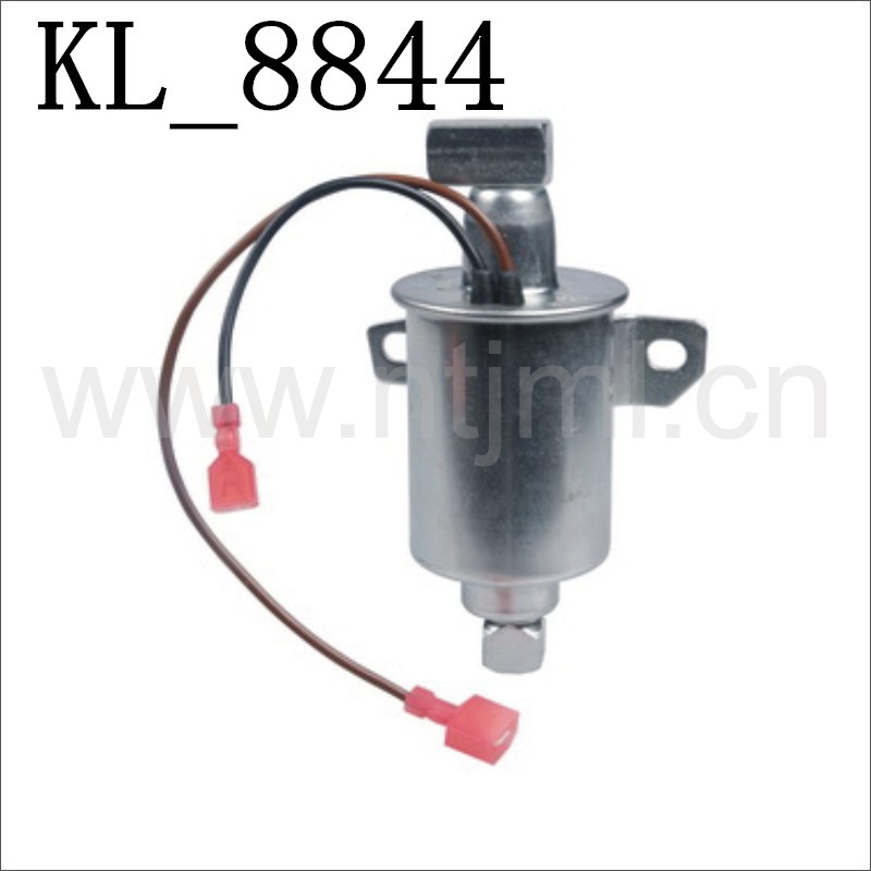High Quality Auto Parts Electric Fuel Piston Pump for Universal (AIRTEX: E11008) with Kl-8844