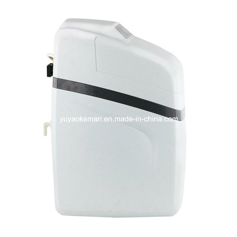1 Ton Water Softener for Water Treatment System pictures & photos