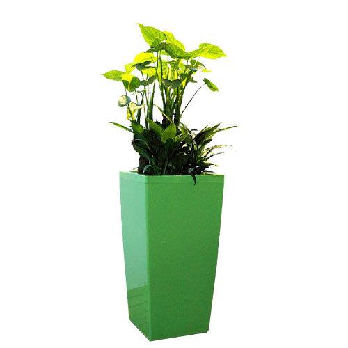 China Metal Flower Baskets and Planters - China Fibergl Pot ... on