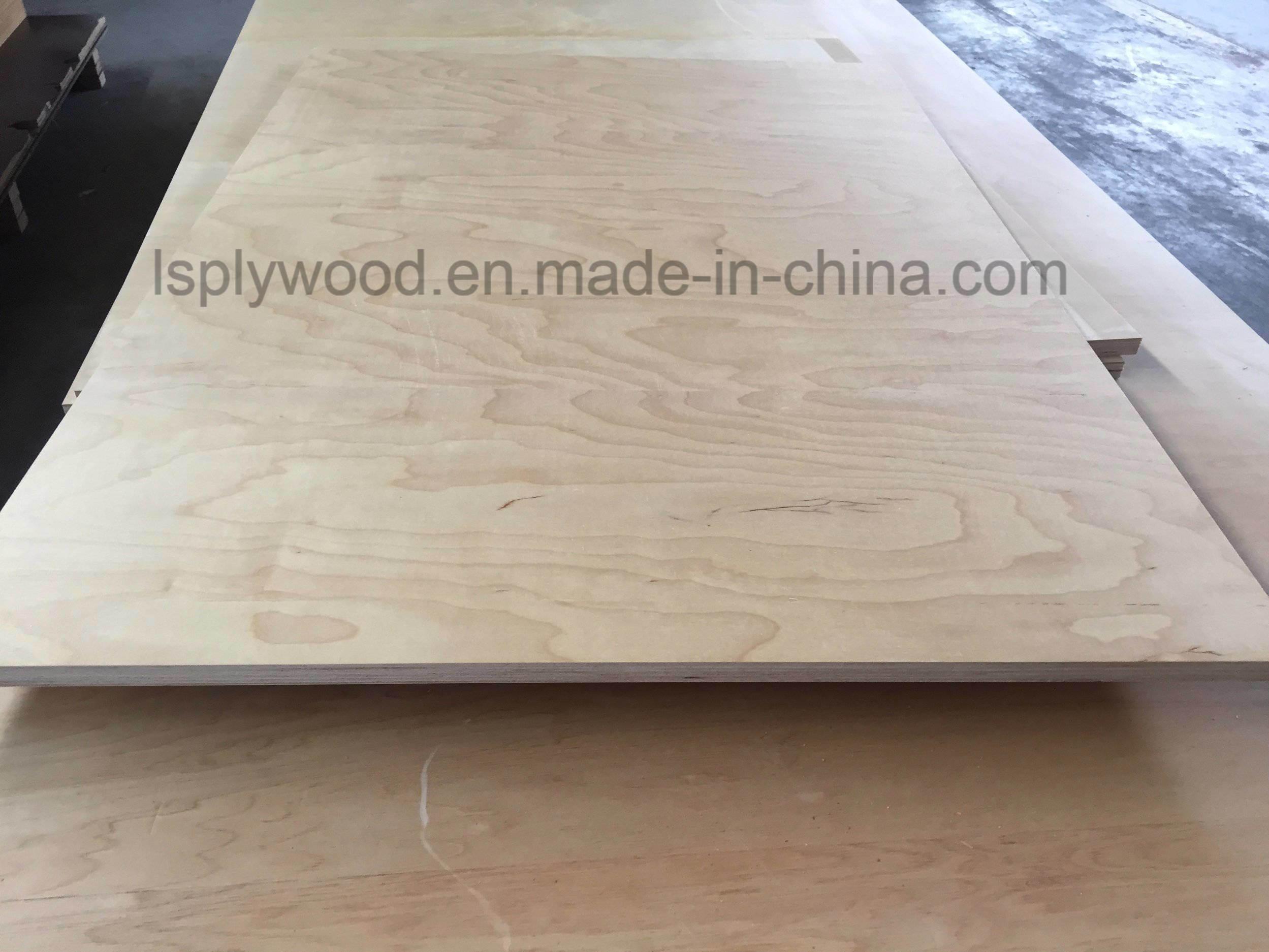 China Industry Waterproofing