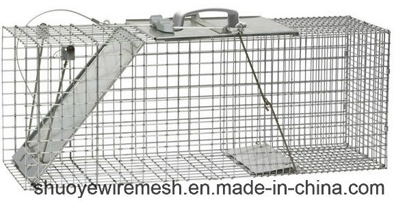 Humane Rabbit Rat Mink Grey Squirrel Small Raccoon Possum Cat Folding Live Animal Cage Trap pictures & photos