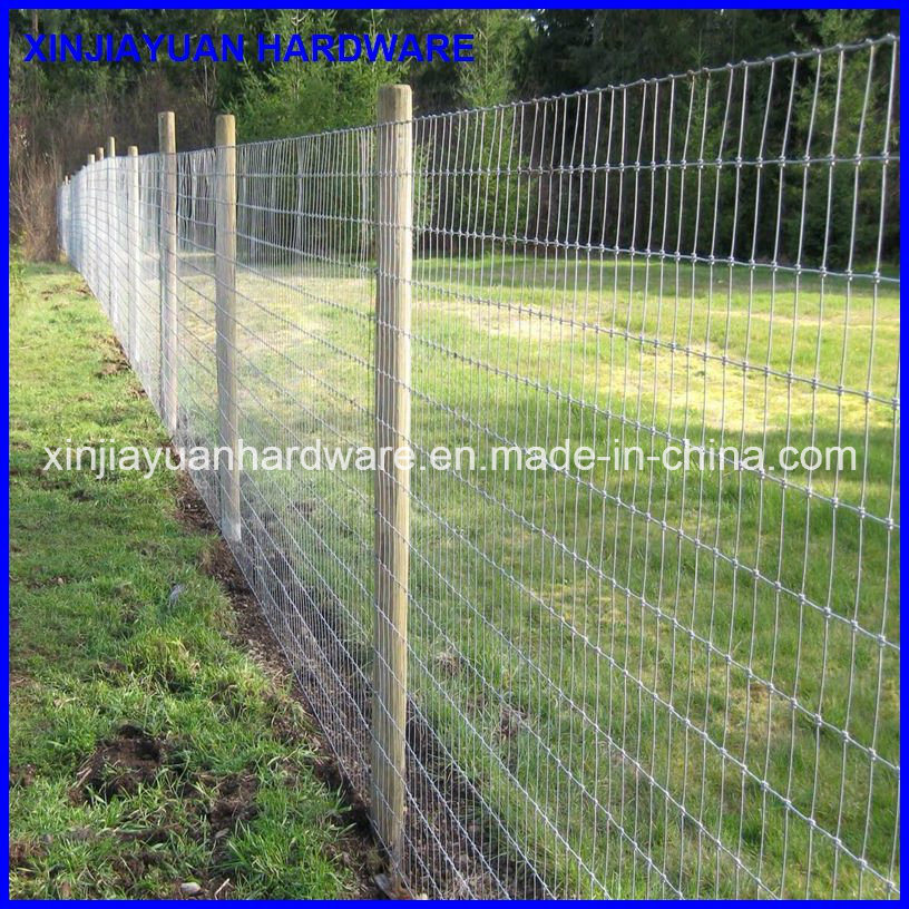 China Veld Span Hinge Joint Farm Fence For Animal Fencing