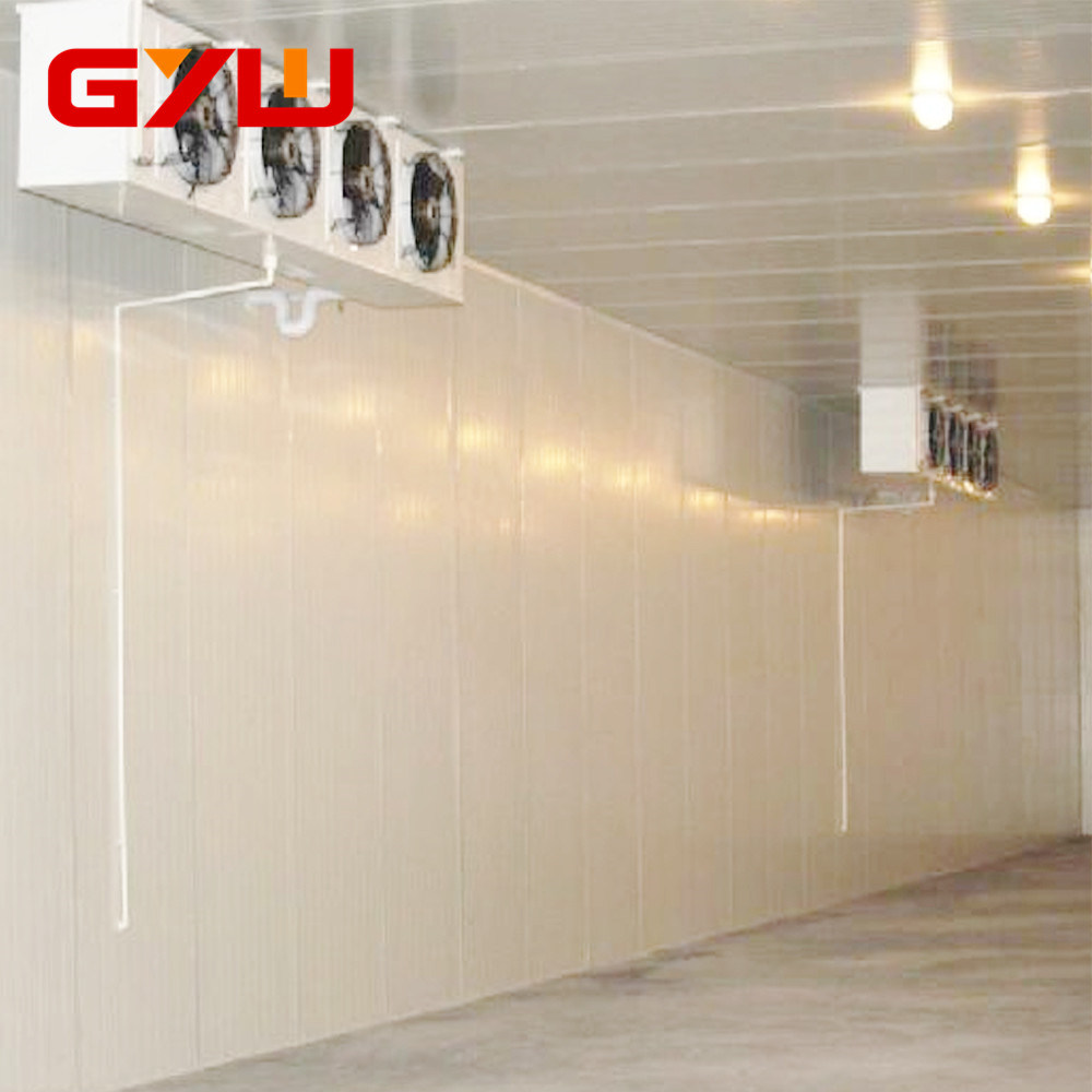 China PU Sandwich Panel Freezer Room High Quality Cold Room China