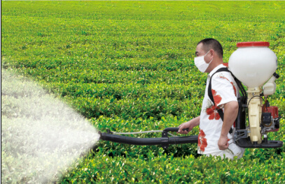 20L High Quality Wholesale Knapsack Backpack Power Mistduster Sprayer (SX-WFB18-3) pictures & photos