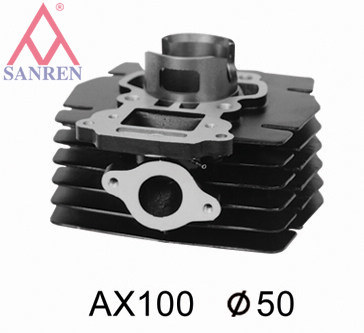 Motorcycle Cylinder Block (AX100)