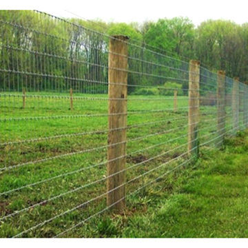 bbdf9a21ac1 China Hot-Dipped Galvanized Welded Steel Wire Mesh Cattle or Farm ...
