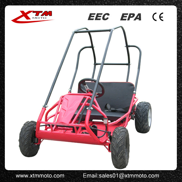 China 2 Seat Gas Kids Cheap 196cc Racing Go Kart for Sale - China ...