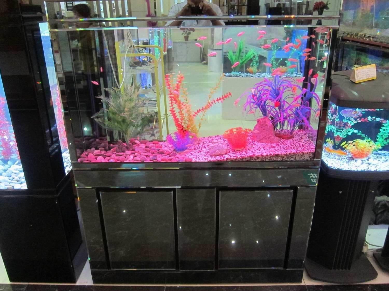 Fish Tank Deutsch