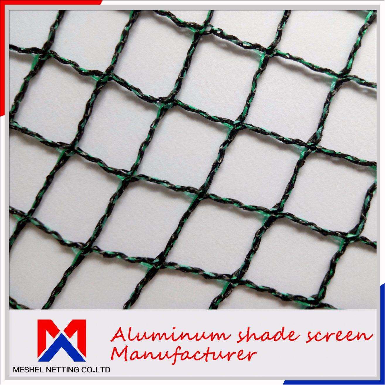 China 100% Nylon Bird Mist Nets Agriculture Anti Bird Net - China ...