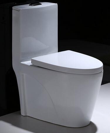 Super White Glaze One Piece Washdown Water Closet / Toilet
