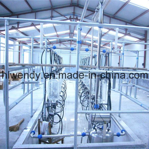 China Herringbone Milking Machine Cow Milking System