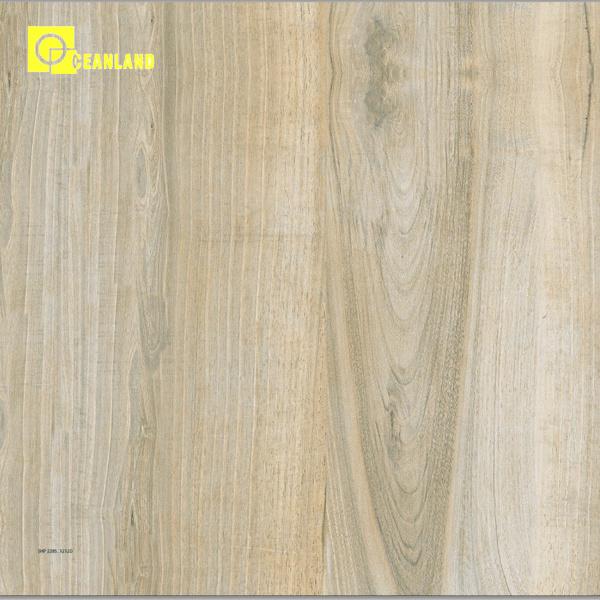 China Hot Sale 2015 New Design Inkjet Floor Tile For Cheap Price