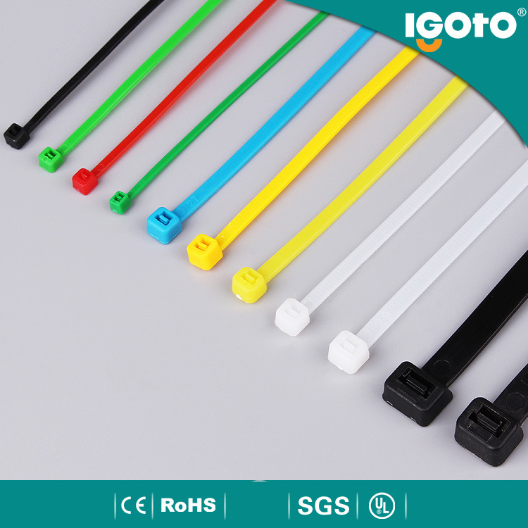 Ce RoHS Certificated PA66 Standard Size Nylon Cable Tie