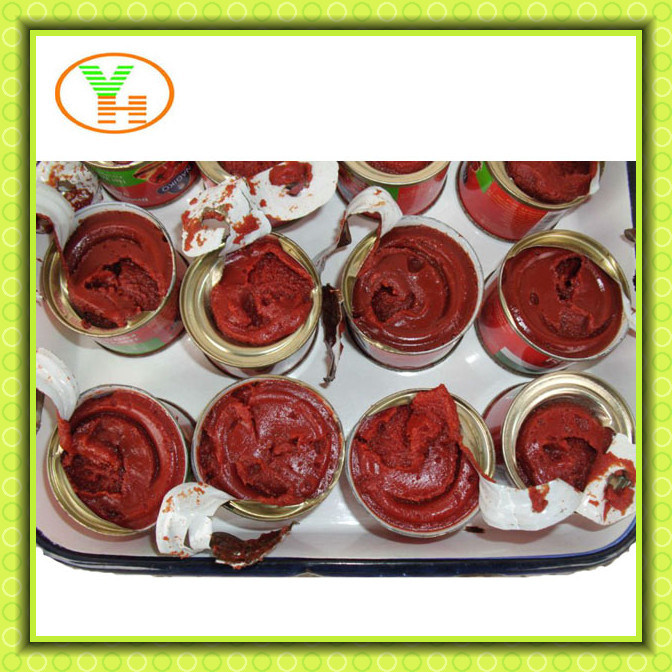 Canned Tomato Paste, 28-30%, Canned Vegetables