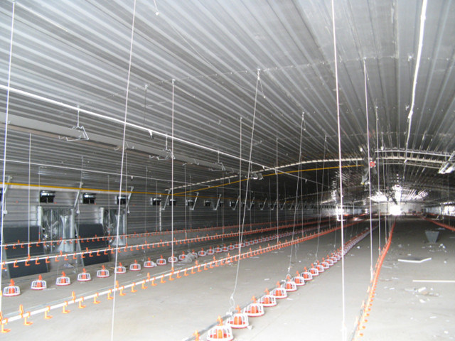 Prefabricated Light Steel Structure Farm with Poultry Equipments