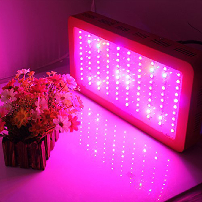 Hot Item Decorative Plant Indoor Grow Lights Led Plant Light Slpt02