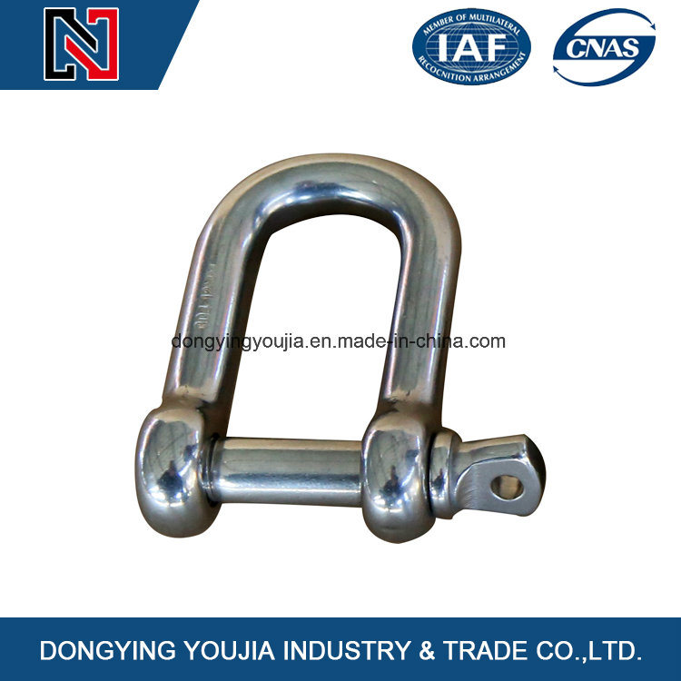 Stainless Steel Drop Forged Screw Pin Anchor Shackle for Rigging