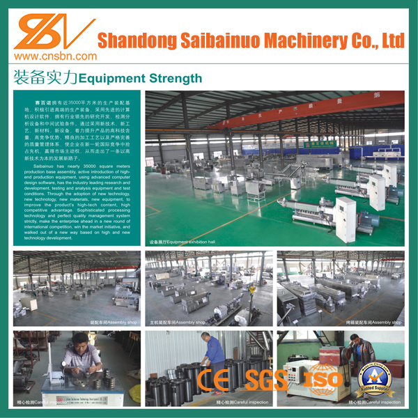 China Pasta Processing Line (DLG100) Photos & Pictures