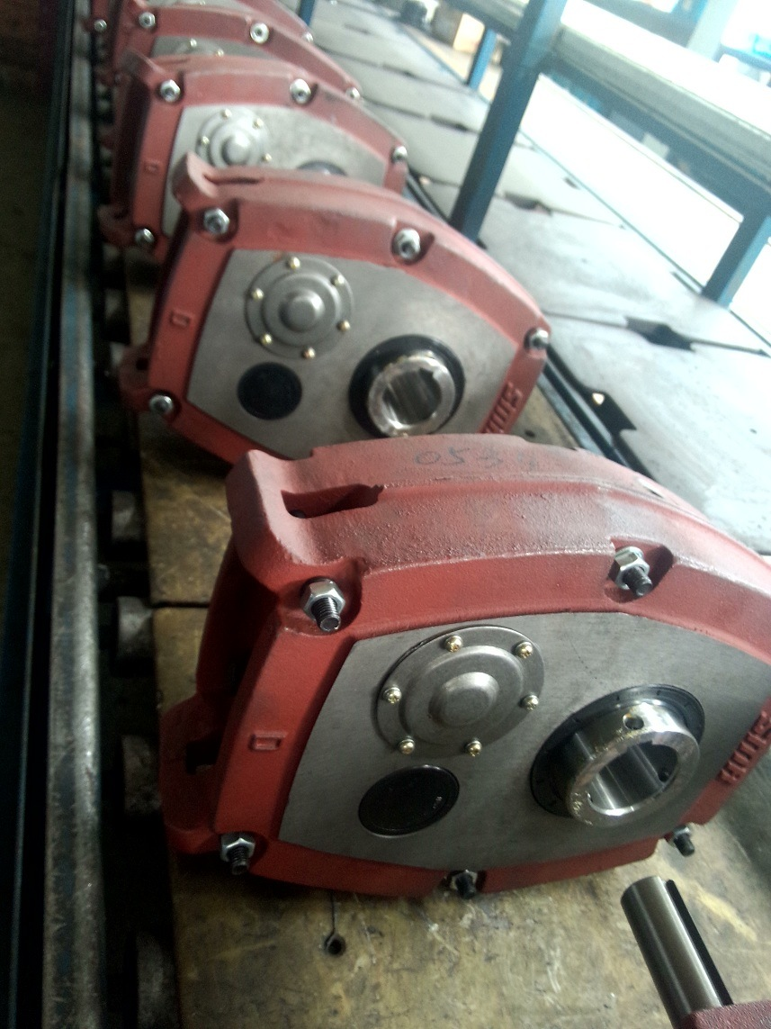 Smr Shaft Mount Reducer Geared Motor Using in Crushing Machine Gear