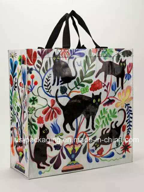 Fashion Non Woven Bag with Printing