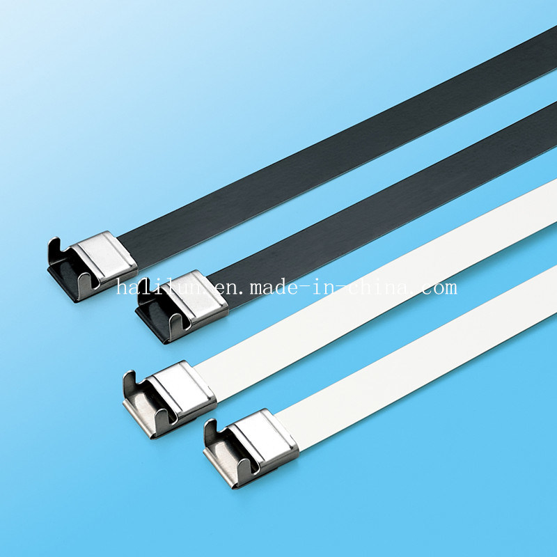 China 304 316 Ss PVC Coated Wing Lock L Type Ss Cable Tie in ...